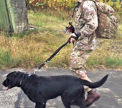 Taking the lead – Pte Ryan Sutcliffe and Viper comb the area